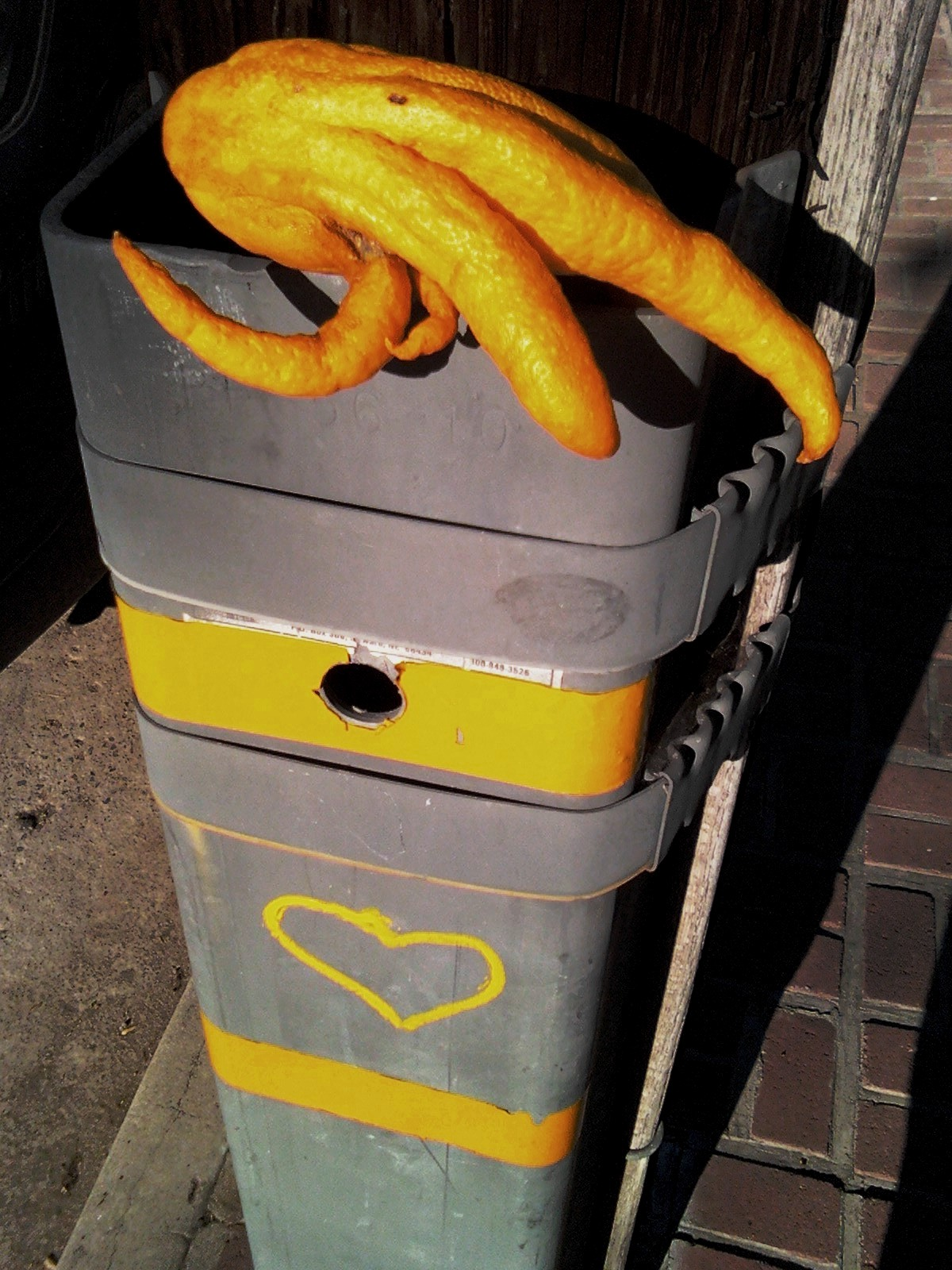 The Budda's Hand Finds The Yellow Heart, N. Beachwood Ave