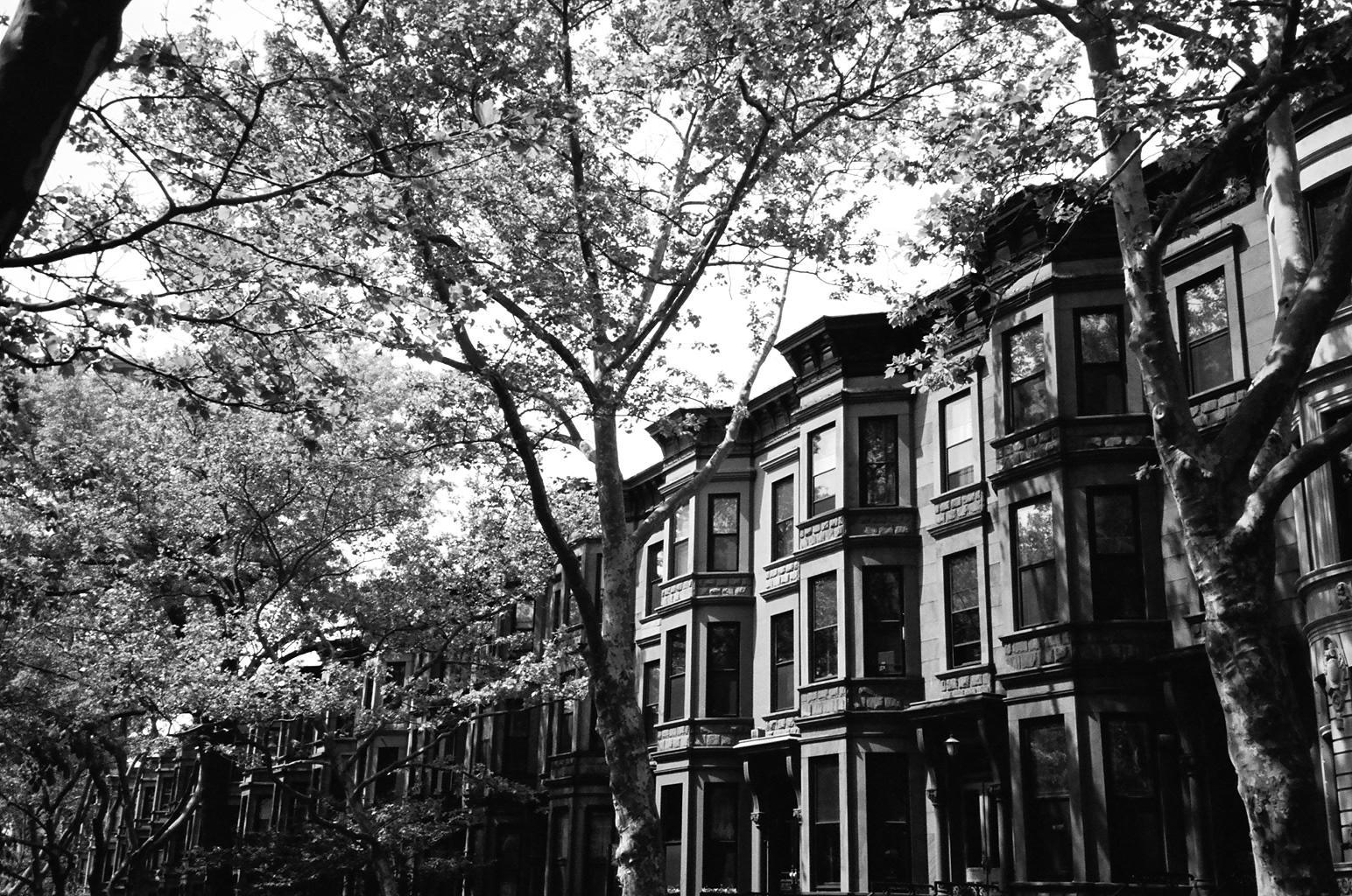 Park Slope Brownstones 1